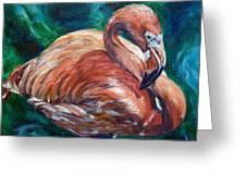 Flamingo Flare Greeting Card