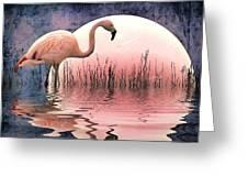 Flamingo Moon Greeting Card
