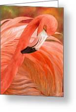 Flamingo - Spirit Of Balance Greeting Card