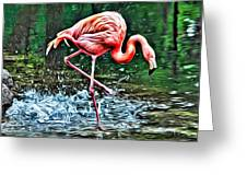 Flamingo Splash Two Greeting Card