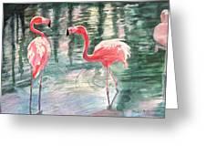 Flamingo Time Greeting Card