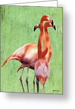 Flamingo Twist Greeting Card by Jeff Kolker