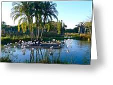 Flamingo Watering Hole Greeting Card