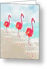 Flamingos On The Beach Greeting Card