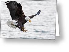 Flaps Down... Gear Down Greeting Card