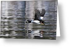 Flaps Up Greeting Card