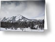 Flatiron Winter Greeting Card