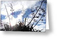 Flax Light Greeting Card