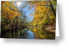 Fleeting Fall  Greeting Card