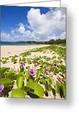 Fleming Beach Greeting Card