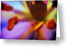 Fleur V Greeting Card