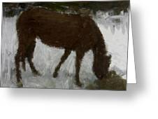 Flicka Greeting Card