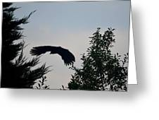 Flight Of The Black Crow Greeting Card