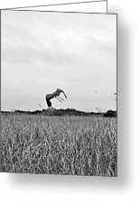 Flight Over The River Of Grass Greeting Card