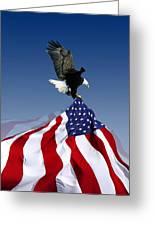 Flight To Freedom Greeting Card