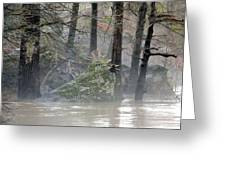 Flint River Rising Greeting Card