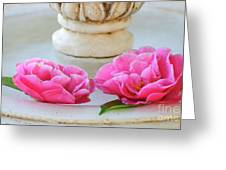 Floating Camellias Greeting Card