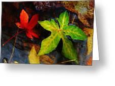Floating Green Leaf Greeting Card