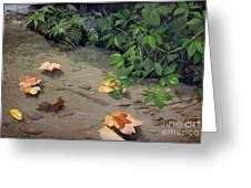 Floating Leaves By George Wood Greeting Card