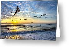 Floating On The Sun Rays Greeting Card