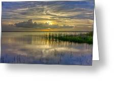 Floating Over The Lake Greeting Card