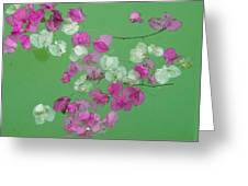 Floating Petals Greeting Card