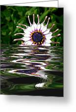Flooded Flower Greeting Card