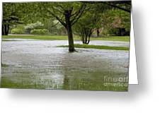 Flooded Park Greeting Card