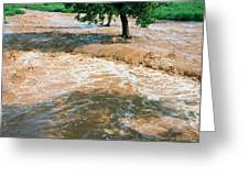 Flooded River Greeting Card