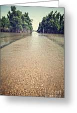 Flooded Road Greeting Card