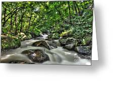 Flooded Small Stream  Greeting Card
