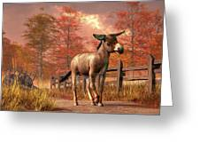 Flop Eared Donkey Greeting Card