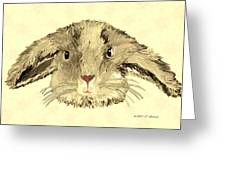 Floppy Bunny Greeting Card by Elizabeth S Zulauf