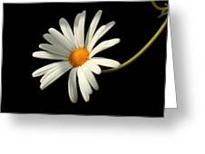 Flora 1 Greeting Card