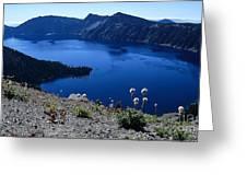 Flora Of Crater Lake Greeting Card