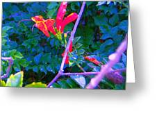 Floral 5 Greeting Card