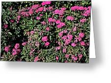 Floral Afternoon Greeting Card