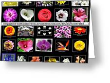 Floral Composite Not For Sale Greeting Card