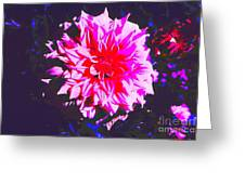 Floral Coral Greeting Card