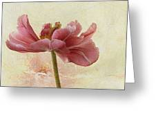 Floral Elegance Greeting Card