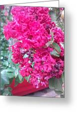 Floral Fever  Greeting Card