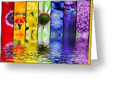 Floral Rainbow Greeting Card