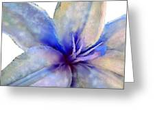 Floral Series - Lily Greeting Card