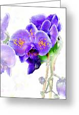 Floral Series - Orchid Greeting Card