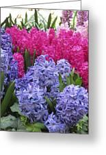 Floral Shades 4 Greeting Card