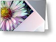 Floral Snap Shot Greeting Card