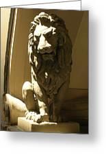 Florence Lion Greeting Card