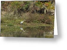 Florence Marina State Park Greeting Card