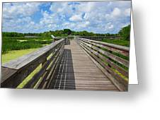 Florida Boardwalk Greeting Card