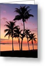 Florida Breeze Greeting Card
